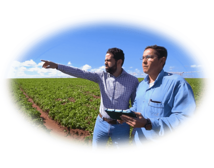 Two men, a farmer and agronomist, look at a field. One man is holding an electronic tablet device